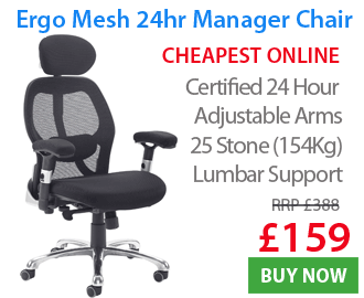Ergo Mesh Managers Chair