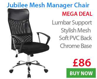 Jubilee Mesh Manager Chair