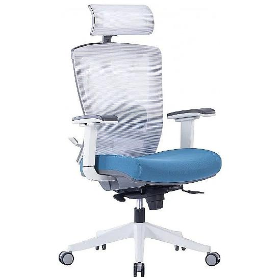 Contract Plus Executive 24/7 Posture Mesh Office C