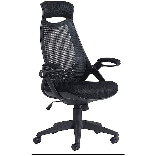 Tuscan High Back Mesh Managers chair