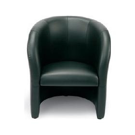 Dream Leather Tub Chair