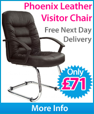 Phoenix Soft Touch Leather Visitor Chair