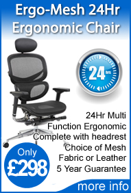 Ergo-Mesh 24hr chair