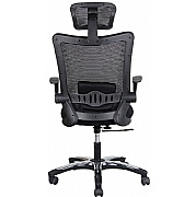 Jupiter Mesh Office Chair